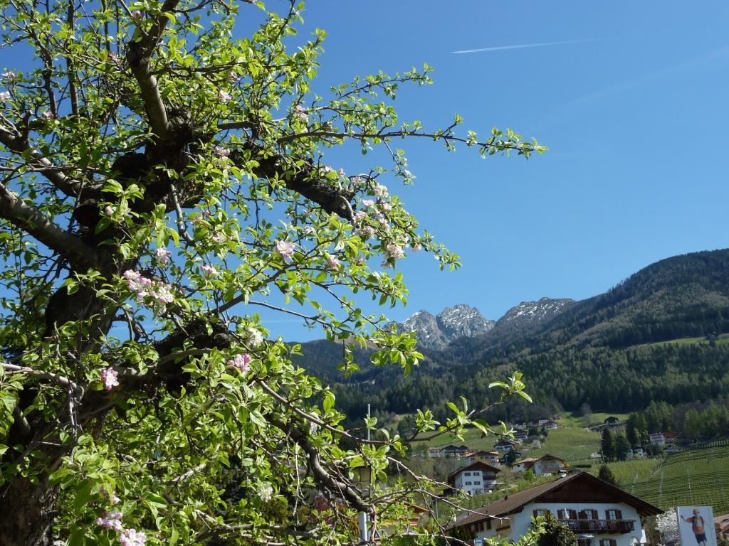 Frühling in Schenna: Die Apfelbaumblüte ist in den Startlöchern!